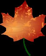 biomasa_categoria